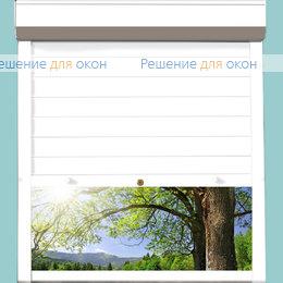 Рольставни для дверей, Профиль PD77/N Белый от производителя жалюзи и рулонных штор РДО