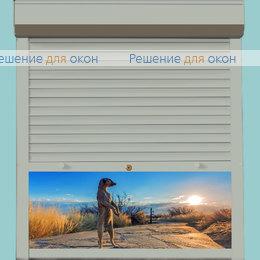 Рольставни для дверей, Профиль PD39/N Серый от производителя жалюзи и рулонных штор РДО