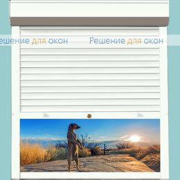 Рольставни для дверей, Профиль PD55/N Белый от производителя жалюзи и рулонных штор РДО